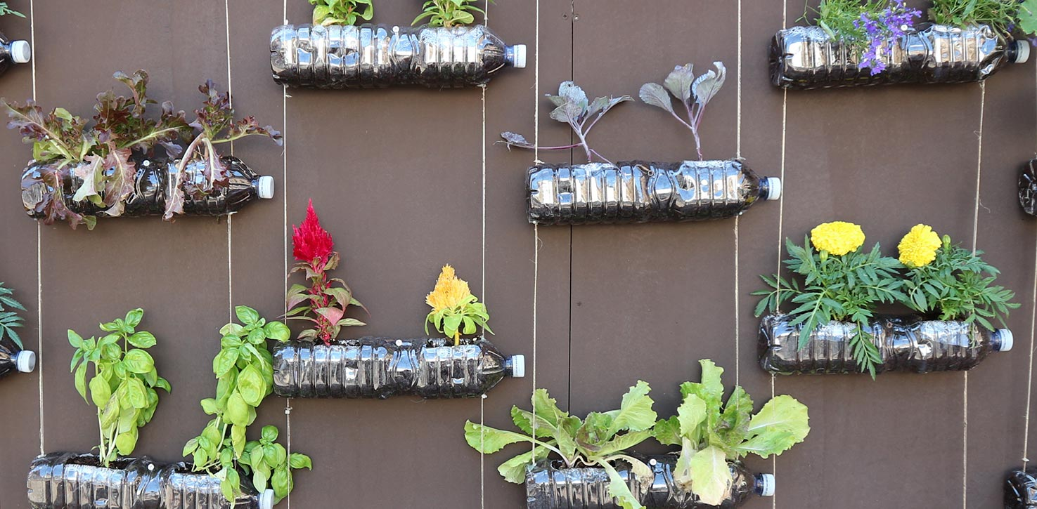 Beautiful vertical gardens can be created from materials you may already have, including wooden boxes, rope and even plastic water bottles!